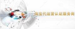 阳泉淘宝代运营:专业技